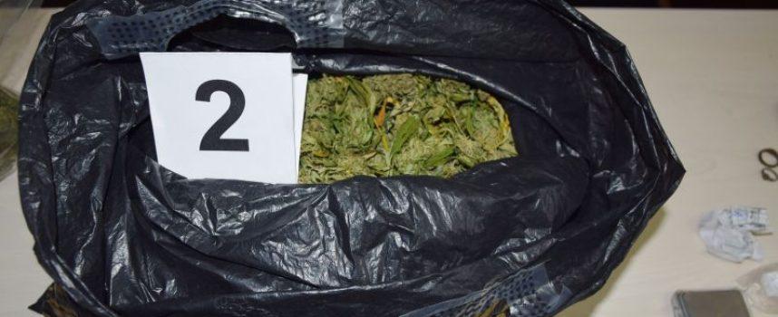 Задържаха 56-годишен от Росен за отглеждане на марихуана