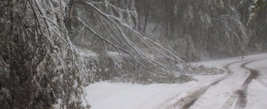 От 10 часа община Брацигово е без ток, в момента още няма