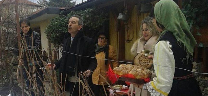 Брацигово: Зарязването на лозите тръгна от двора на Димитър Дименов