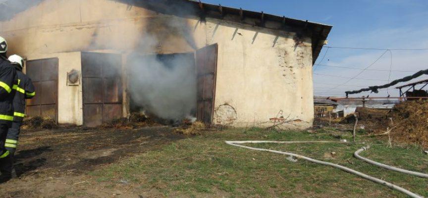 В Синитово: Пожар унищожи 58 кокошки, крава и шест зайци, рухна покрив на обор