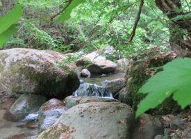 Съботни маршрути: Пеша край Брацигово и Пещера по пътищата, които водят към Рим