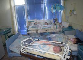Две бебета донесе щъркелът в МБАЛ – Пазарджик за деня на детето
