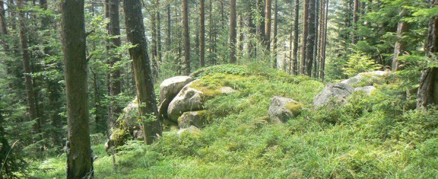"76-годишен изчезна в местността ""Куртлуджа"""