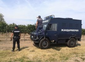 Съвместни екипи на полиция и жандармерия ще пазят лозовите масиви в община Септември