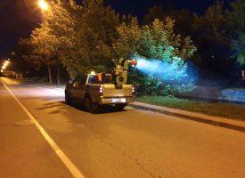 Продължава поетапното пръскане и обработка на дървесните видове срещу гъсеници и вредители в Пазарджик и околните села