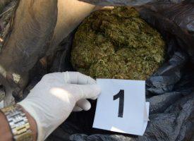 Двама остават в ареста заради плантацията с марихуаната в Поибрене