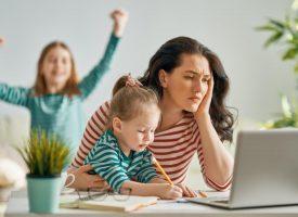 ИА ГИТ предупреждава за рисковете на работата от разстояние