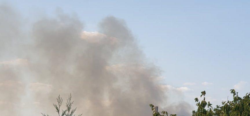 Лозя и сухи треви горят край Карабунар, Виноградец и Памидово