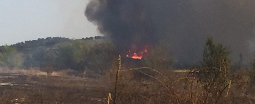 2 декара гора и 650 декара сухи треви изгоряха в пожара край Карабунар