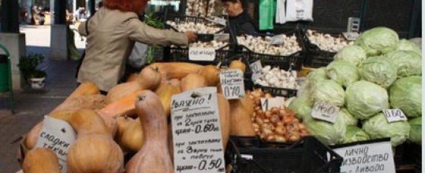 Тиквените семки изчезват от пазара, лекуват девет болести и пазят от коронавирус