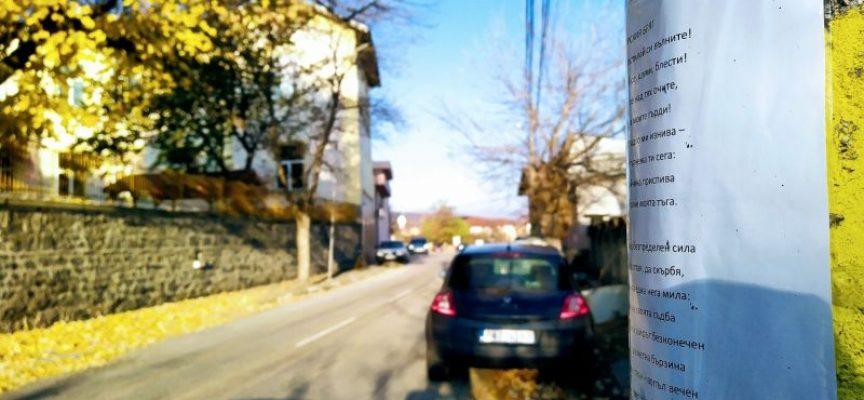 """Поезия и проза на село""  украсиха улиците на Паталеница"