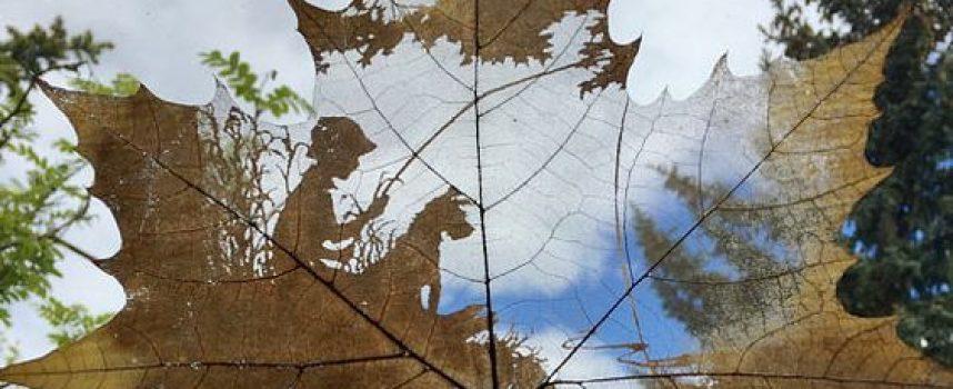 Зимни игри: Рисувайте върху листа