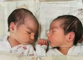 """По едно бебе на ден е заченато в ин витро клиниката на """"Селена"""" през 2020 година"""