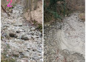 Читателска връзка: Кой пресуши Новомахаленска река?