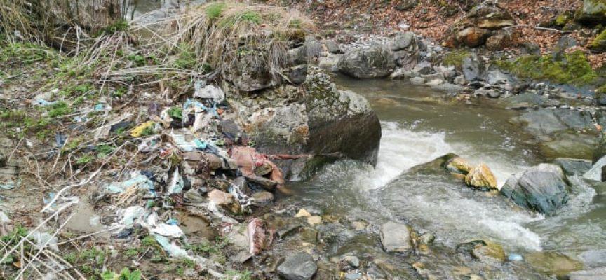 """УТРЕ: Служители на """"Биовет"""" АД и Община Пещера се включват в голямото чистене на Стара река"""