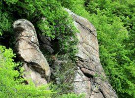 Съботни маршрути: Жребичко – селото, в което се случват чудеса